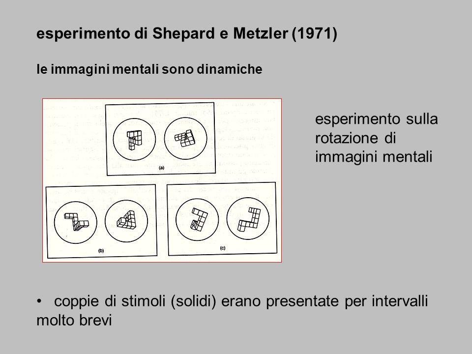 esperimento di Shepard e Metzler (1971) le immagini mentali sono dinamiche coppie di stimoli (solidi) erano presentate per intervalli molto brevi espe