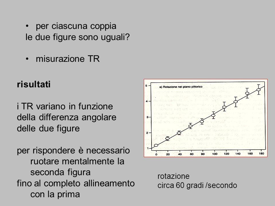 per ciascuna coppia le due figure sono uguali? misurazione TR risultati i TR variano in funzione della differenza angolare delle due figure per rispon