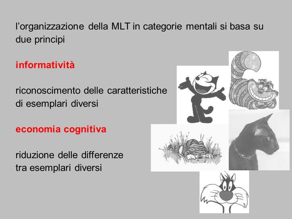 lorganizzazione della MLT in categorie mentali si basa su due principi informatività riconoscimento delle caratteristiche di esemplari diversi economi