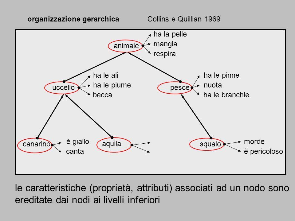 organizzazione gerarchica Collins e Quillian 1969 animale ha la pelle mangia respira uccellopesce ha le ali ha le piume becca ha le pinne nuota ha le