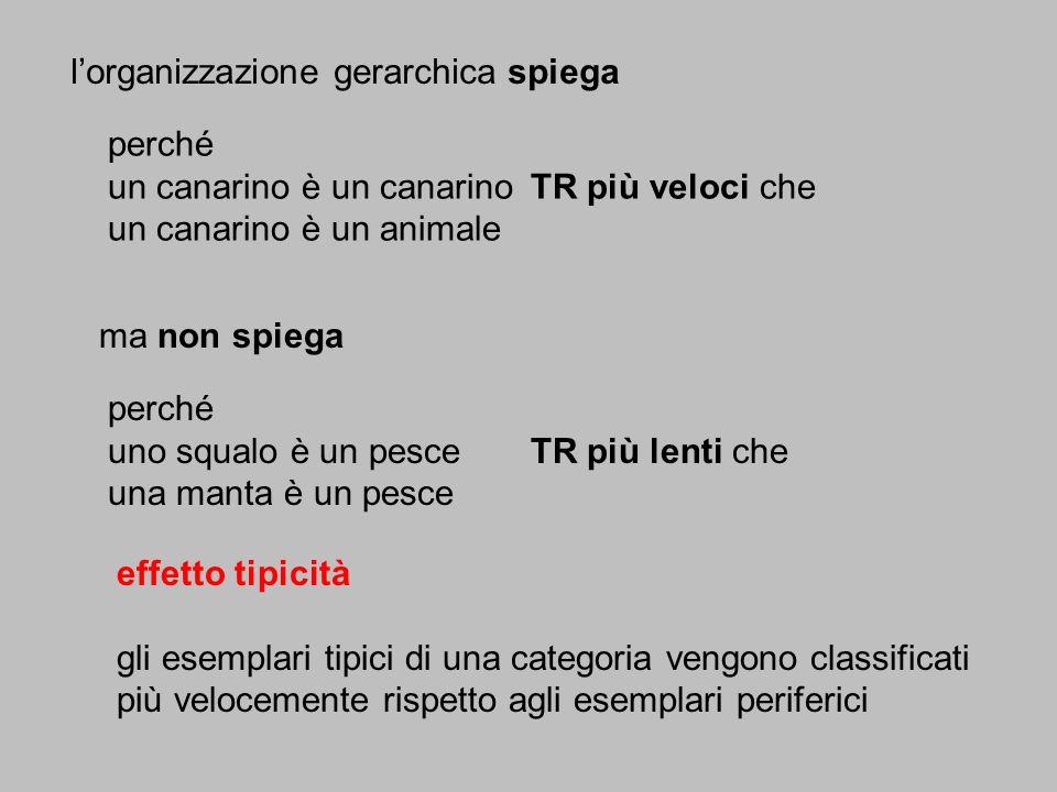 lorganizzazione gerarchica spiega perché un canarino è un canarinoTR più veloci che un canarino è un animale ma non spiega effetto tipicità gli esempl