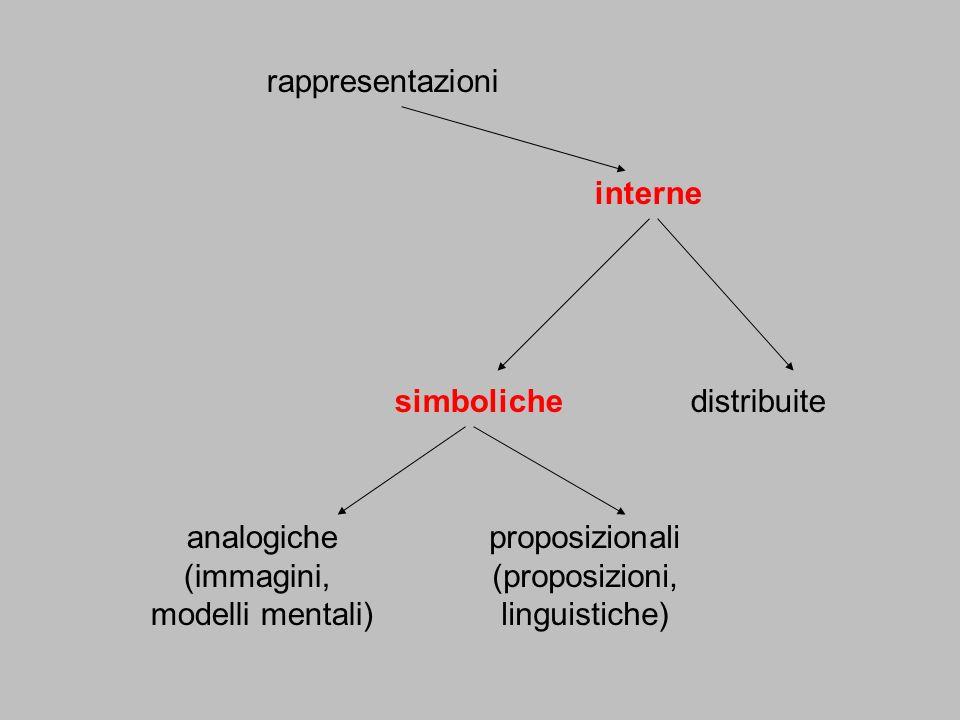 rappresentazioni interne simbolichedistribuite analogiche (immagini, modelli mentali) proposizionali (proposizioni, linguistiche)