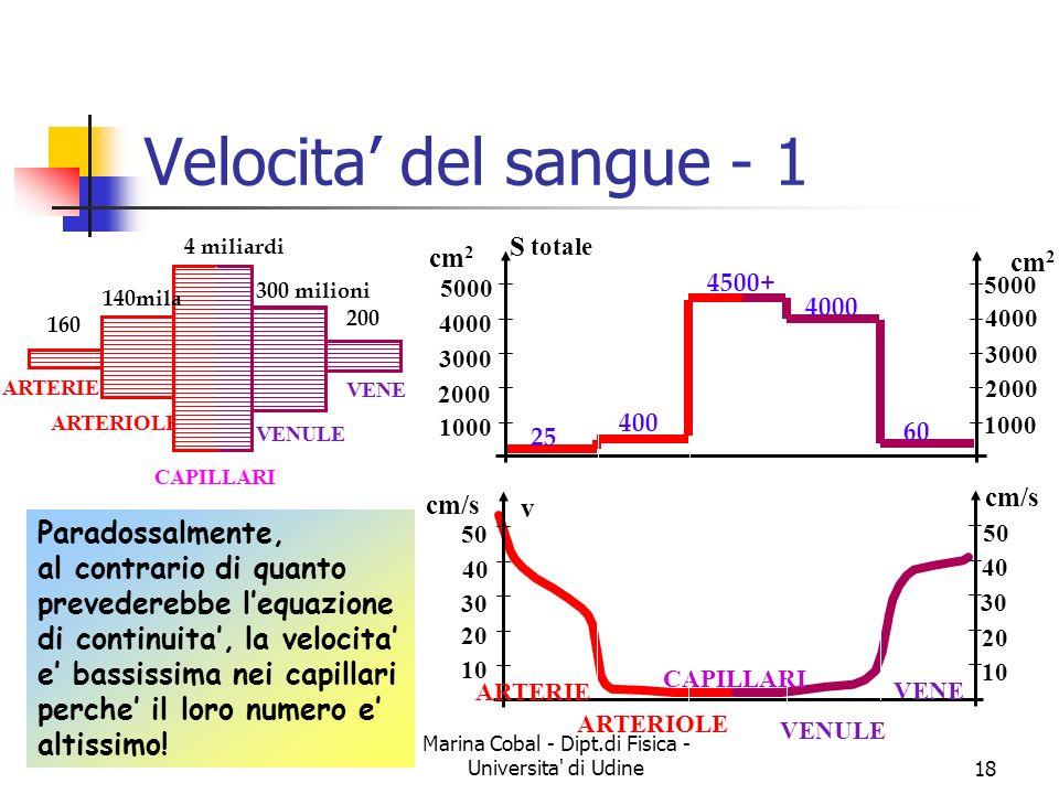 Marina Cobal - Dipt.di Fisica - Universita' di Udine17 Equazione di continuita - 2 S 1 = 5 cm 2 v 1 = 20 cm/s S 2 = 1.25 cm 2 v 2 = 80 cm/s Q = 100 cm