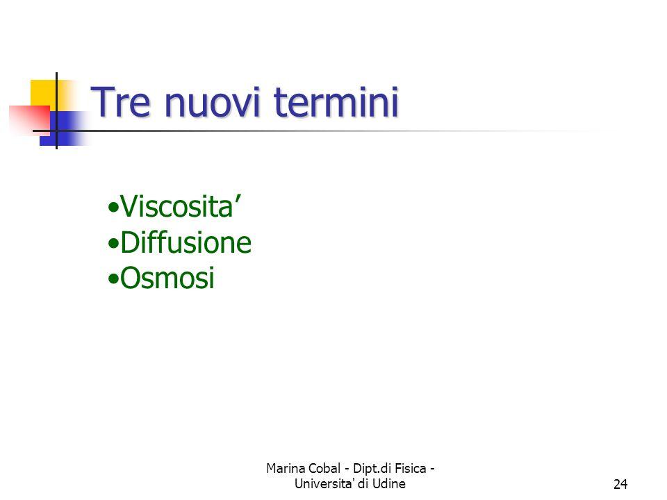 Marina Cobal - Dipt.di Fisica - Universita' di Udine23 Un esempio Si consideri una tanica di acqua che presenta un foro sul lato a distanza h dalla su