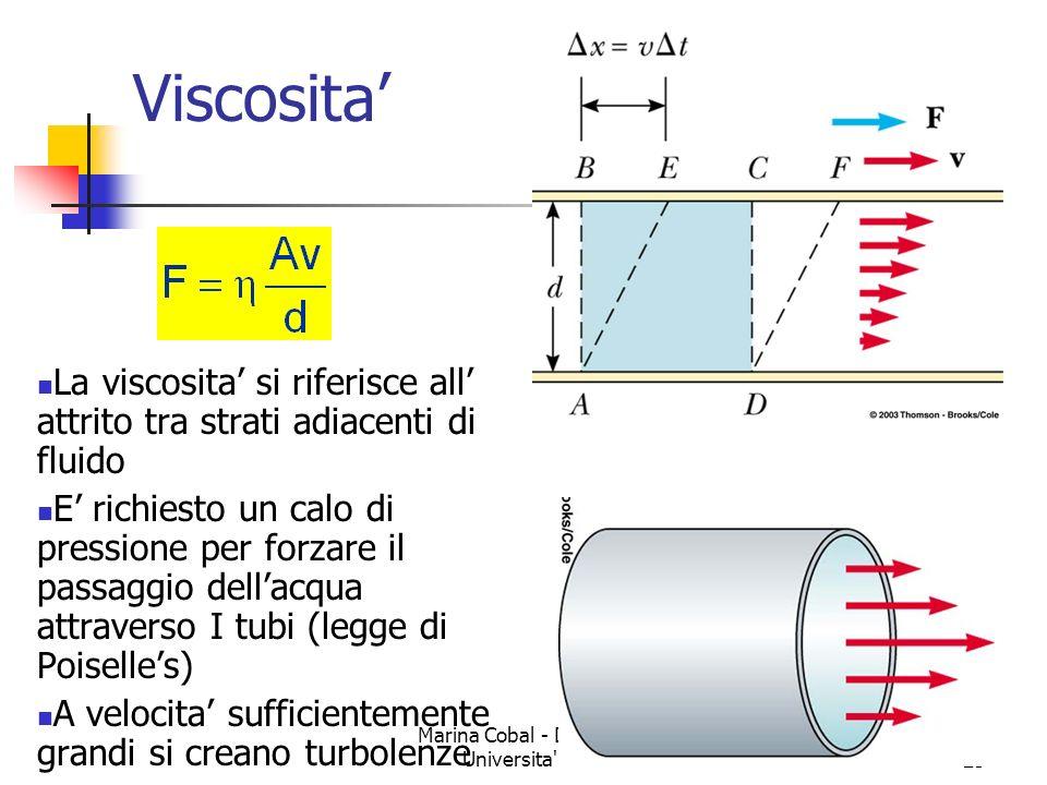 Marina Cobal - Dipt.di Fisica - Universita' di Udine24 Tre nuovi termini Viscosita Diffusione Osmosi