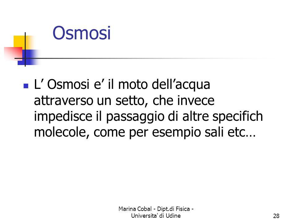 Marina Cobal - Dipt.di Fisica - Universita' di Udine27 Diffusione Le molecole si muovono dalle regioni a piu alta concentrazione alle regioni a bassa