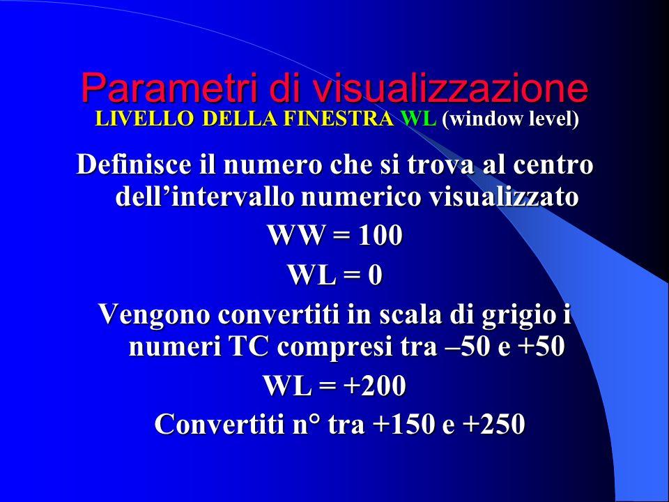 Parametri di visualizzazione Definisce il numero che si trova al centro dellintervallo numerico visualizzato WW = 100 WL = 0 Vengono convertiti in sca
