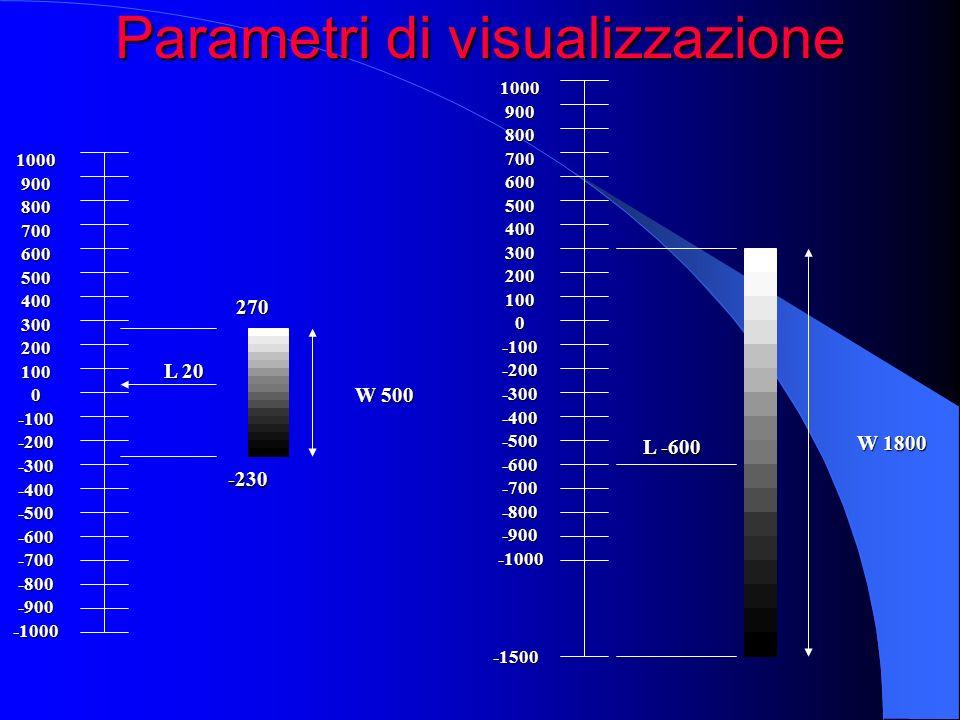 Parametri di visualizzazione 10009008007006005004003002001000-100-200-300-400-500-600-700-800-900-1000 270 -230 L 20 W 500 100090080070060050040030020