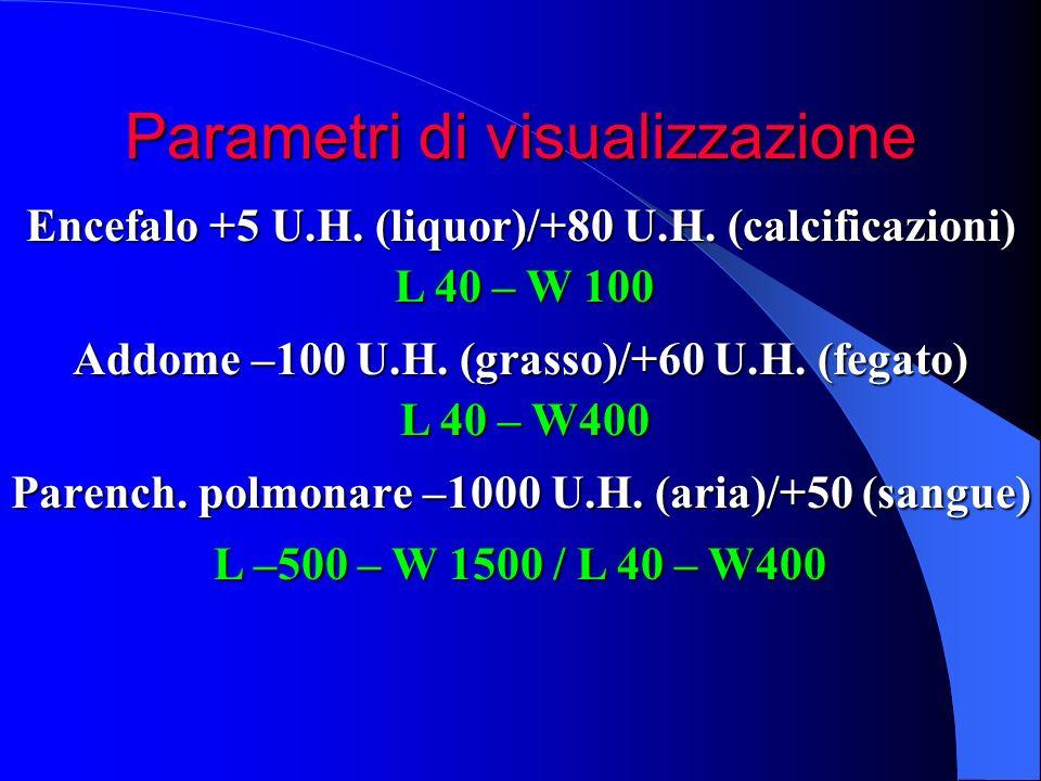 Parametri di visualizzazione Encefalo +5 U.H. (liquor)/+80 U.H. (calcificazioni) Addome –100 U.H. (grasso)/+60 U.H. (fegato) Parench. polmonare –1000