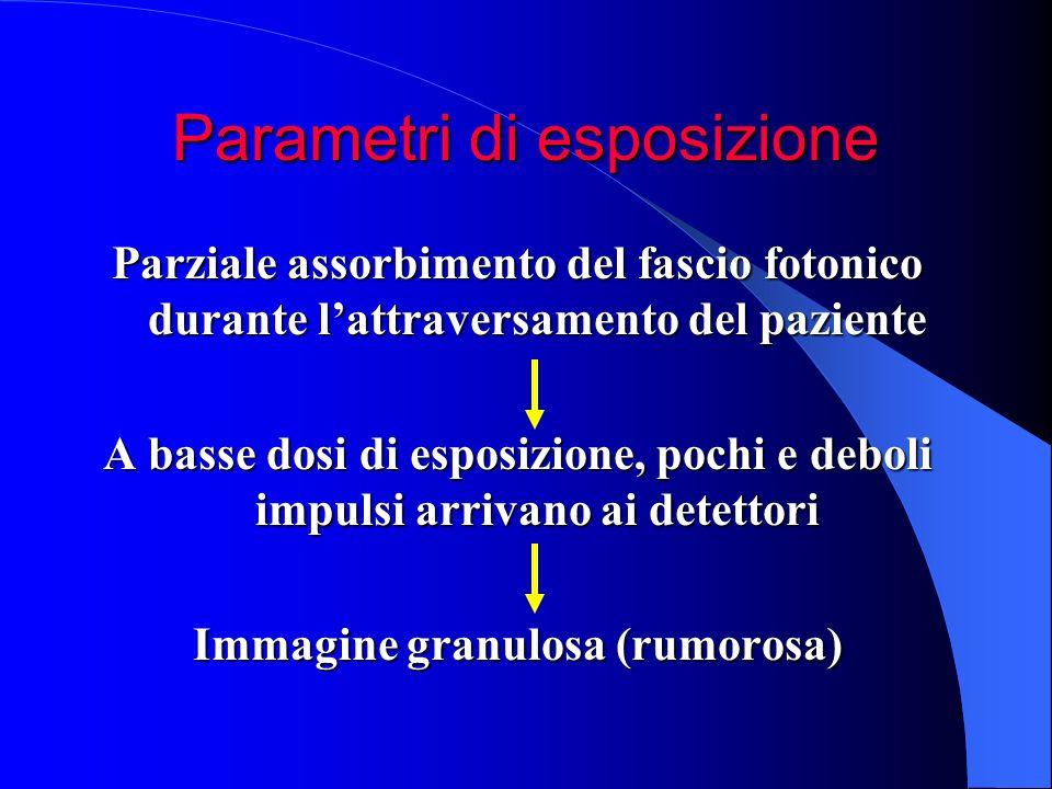 Parametri di esposizione Parziale assorbimento del fascio fotonico durante lattraversamento del paziente A basse dosi di esposizione, pochi e deboli i