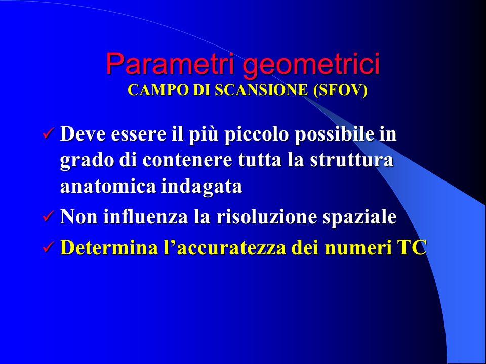 Parametri geometrici Deve essere il più piccolo possibile in grado di contenere tutta la struttura anatomica indagata Deve essere il più piccolo possi