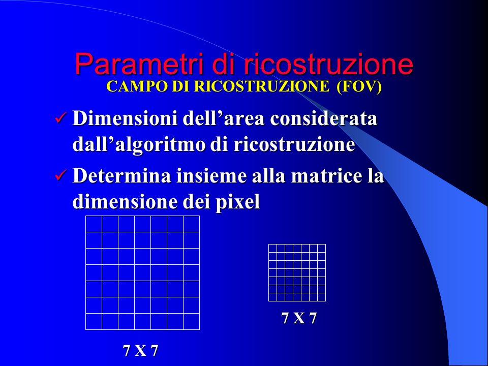 Parametri di ricostruzione Dimensioni dellarea considerata dallalgoritmo di ricostruzione Dimensioni dellarea considerata dallalgoritmo di ricostruzio