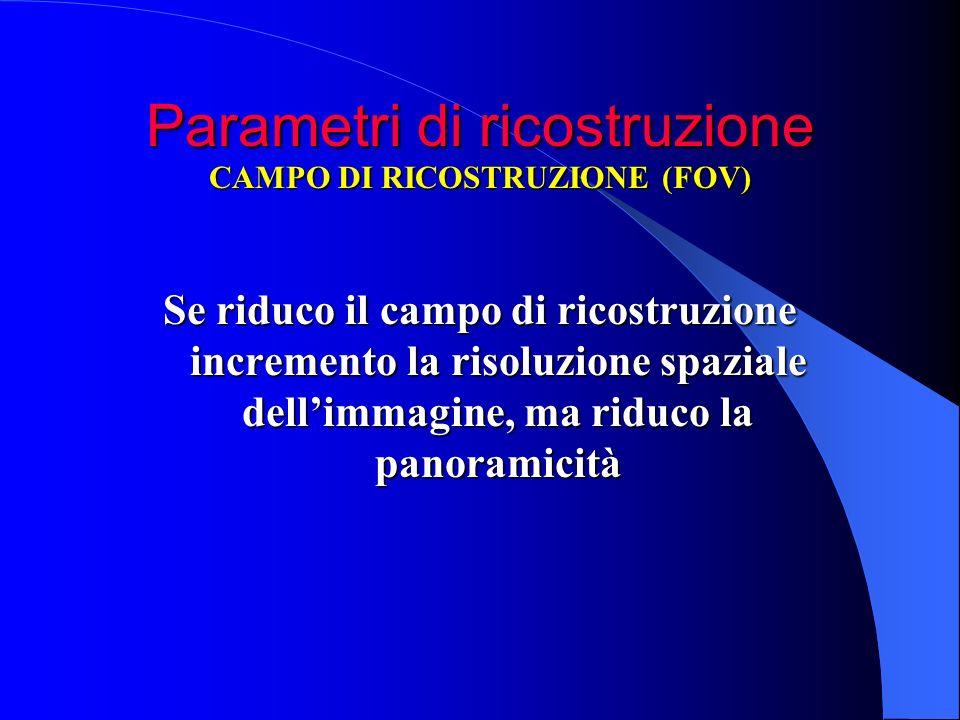 Parametri di ricostruzione Se riduco il campo di ricostruzione incremento la risoluzione spaziale dellimmagine, ma riduco la panoramicità CAMPO DI RIC