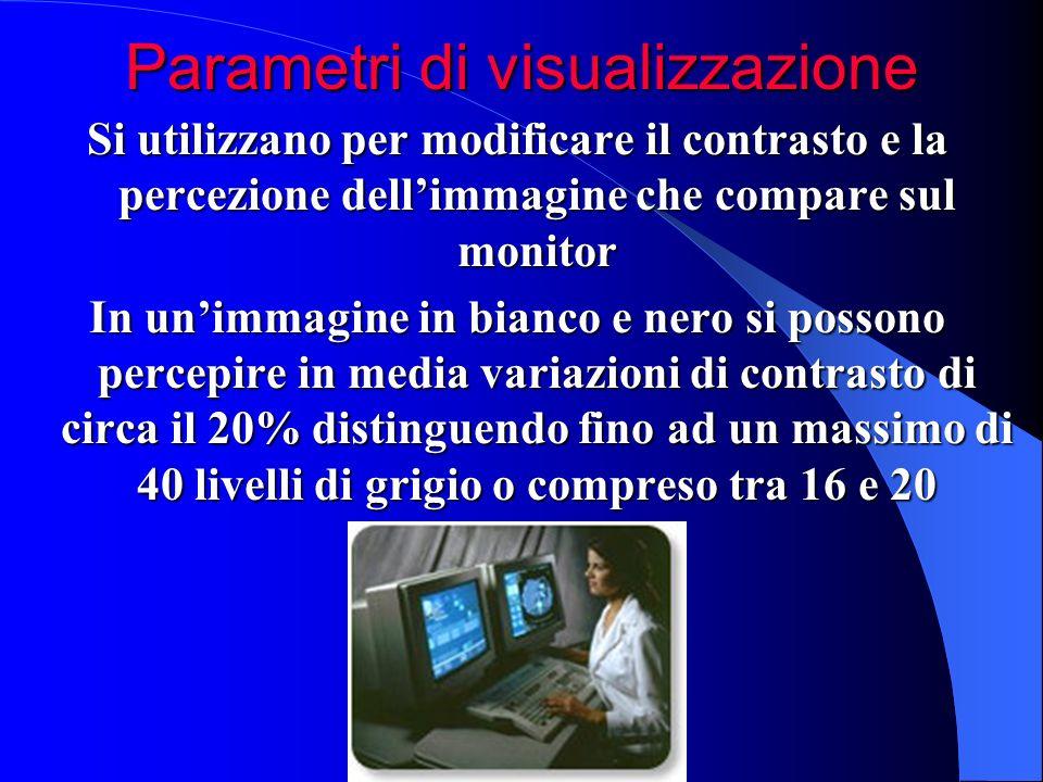 Si utilizzano per modificare il contrasto e la percezione dellimmagine che compare sul monitor In unimmagine in bianco e nero si possono percepire in