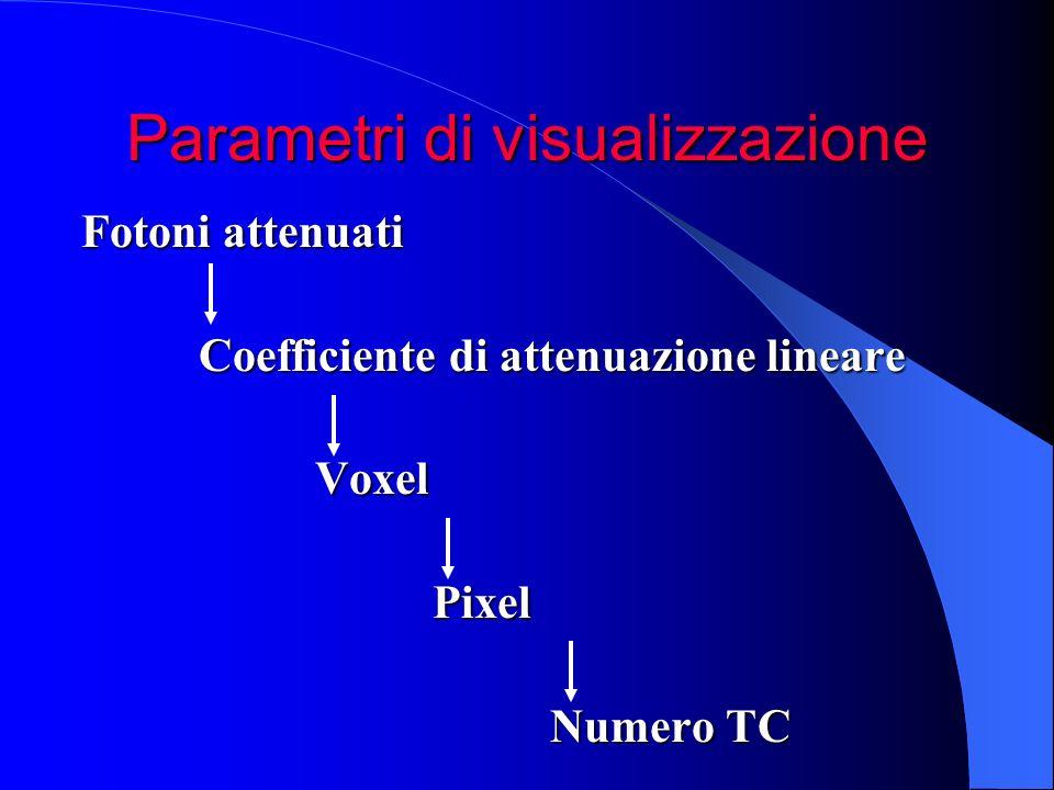Parametri di visualizzazione Fotoni attenuati Coefficiente di attenuazione lineare Coefficiente di attenuazione lineare Voxel Voxel Pixel Pixel Numero
