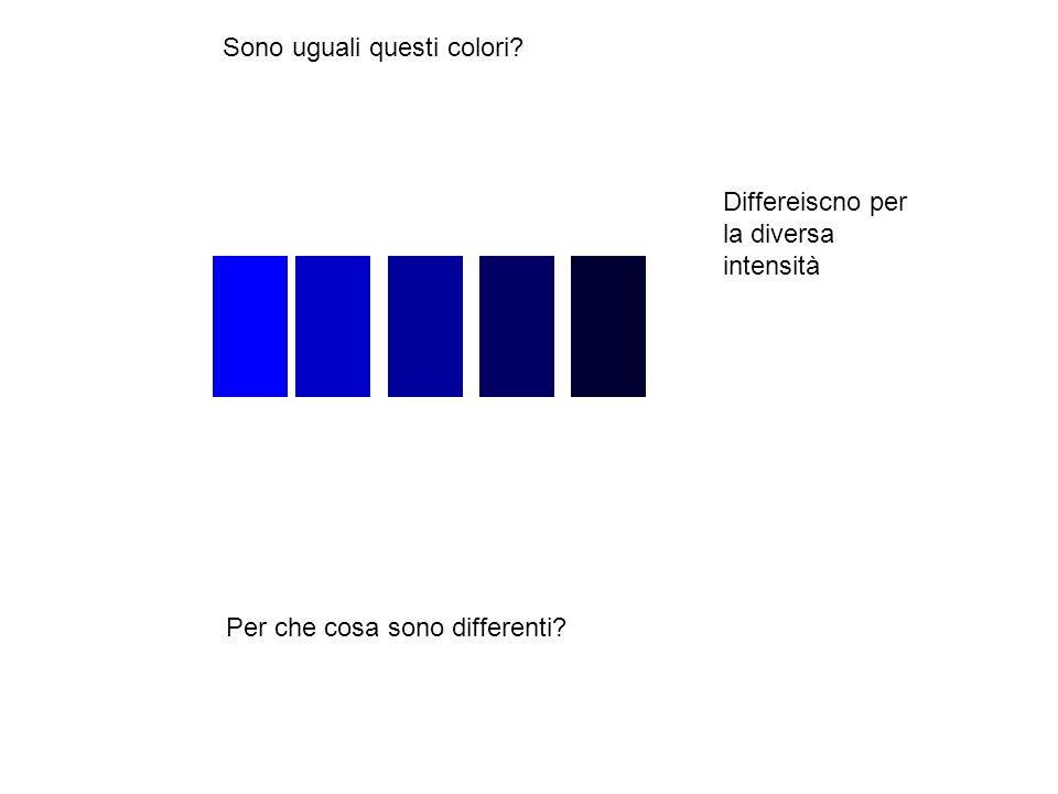 Sono uguali questi colori? Per che cosa sono differenti? Differeiscno per la diversa intensità