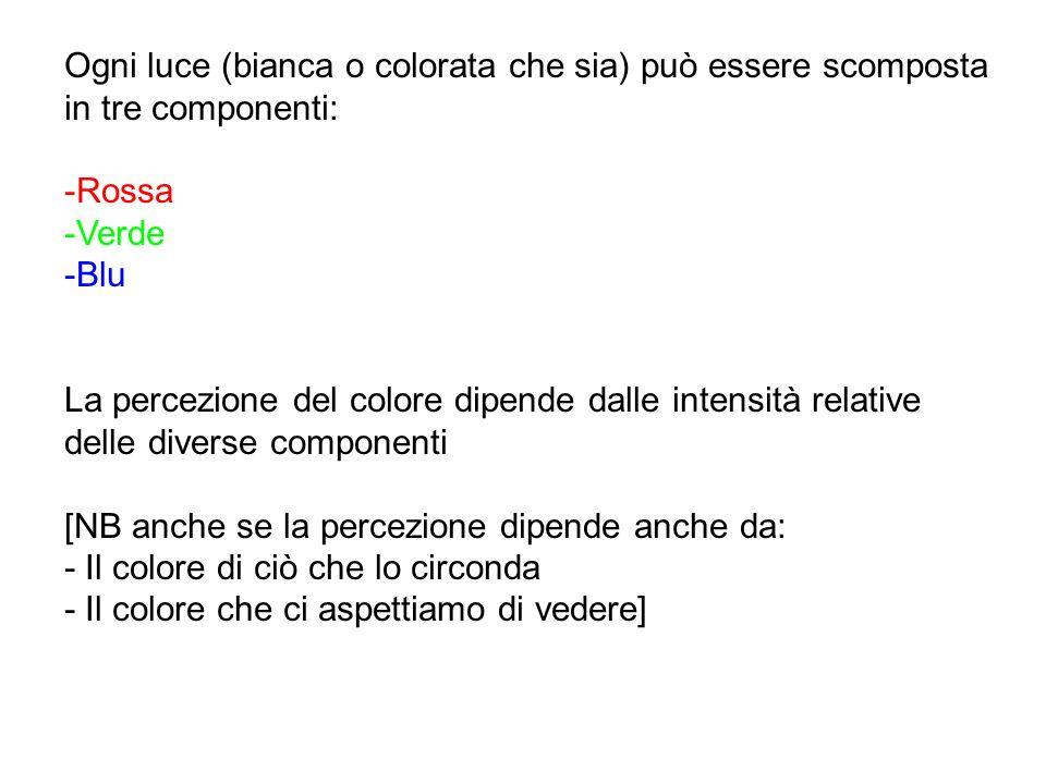Bibliografia: Corni, F., Michelini, M.and Ottaviani, G.