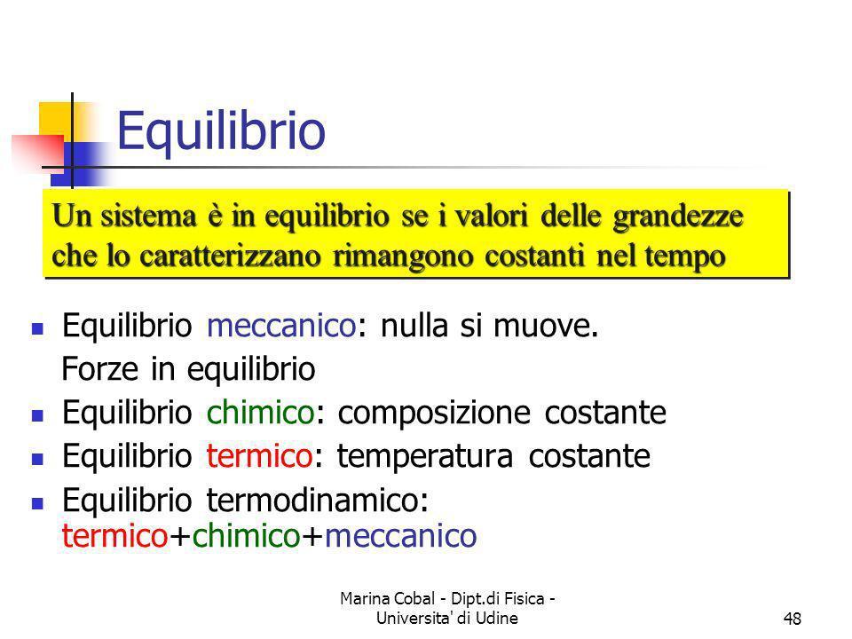 Marina Cobal - Dipt.di Fisica - Universita' di Udine48 Equilibrio Equilibrio meccanico: nulla si muove. Forze in equilibrio Equilibrio chimico: compos