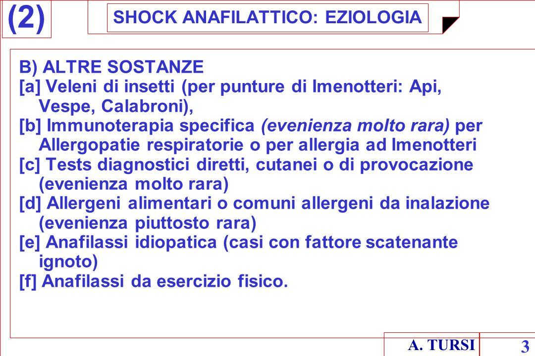 A. TURSI 3 SHOCK ANAFILATTICO: EZIOLOGIA B) ALTRE SOSTANZE [a] Veleni di insetti (per punture di Imenotteri: Api, Vespe, Calabroni), [b] Immunoterapia
