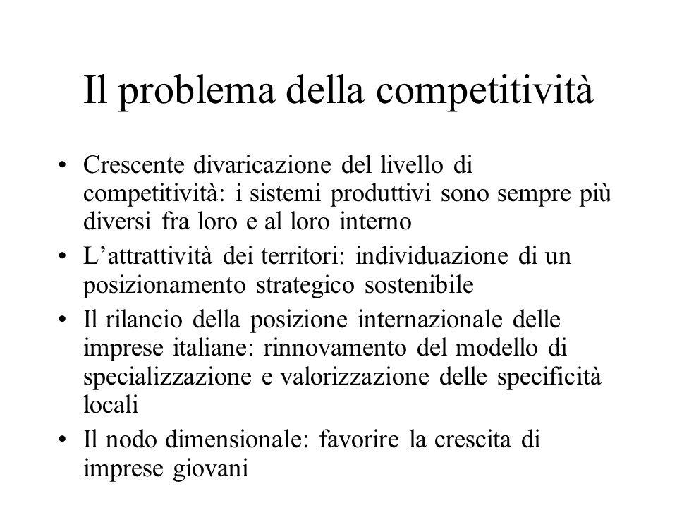 Il problema della competitività Crescente divaricazione del livello di competitività: i sistemi produttivi sono sempre più diversi fra loro e al loro