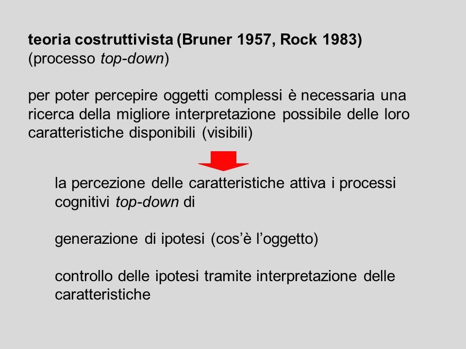teoria costruttivista (Bruner 1957, Rock 1983) (processo top-down) per poter percepire oggetti complessi è necessaria una ricerca della migliore inter