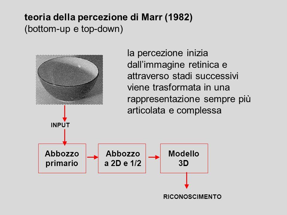 Abbozzo a 2D e 1/2 Abbozzo primario Modello 3D INPUT RICONOSCIMENTO la percezione inizia dallimmagine retinica e attraverso stadi successivi viene tra