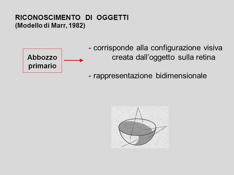- corrisponde alla configurazione visiva creata dalloggetto sulla retina - rappresentazione bidimensionale RICONOSCIMENTO DI OGGETTI (Modello di Marr,