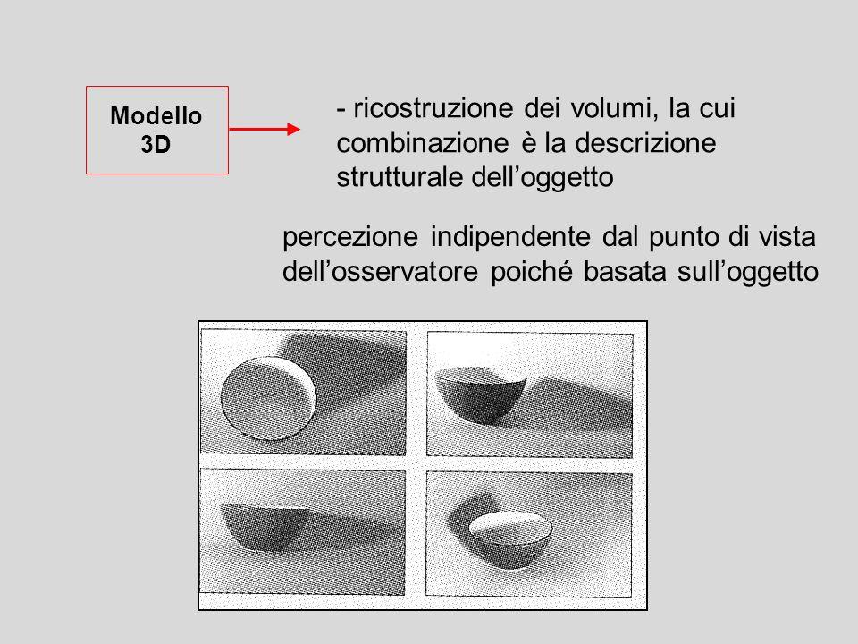 - ricostruzione dei volumi, la cui combinazione è la descrizione strutturale delloggetto Modello 3D percezione indipendente dal punto di vista delloss
