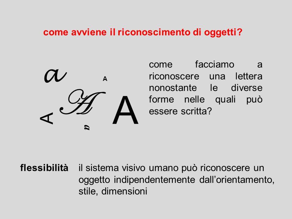 come avviene il riconoscimento di oggetti? a A a A A A come facciamo a riconoscere una lettera nonostante le diverse forme nelle quali può essere scri