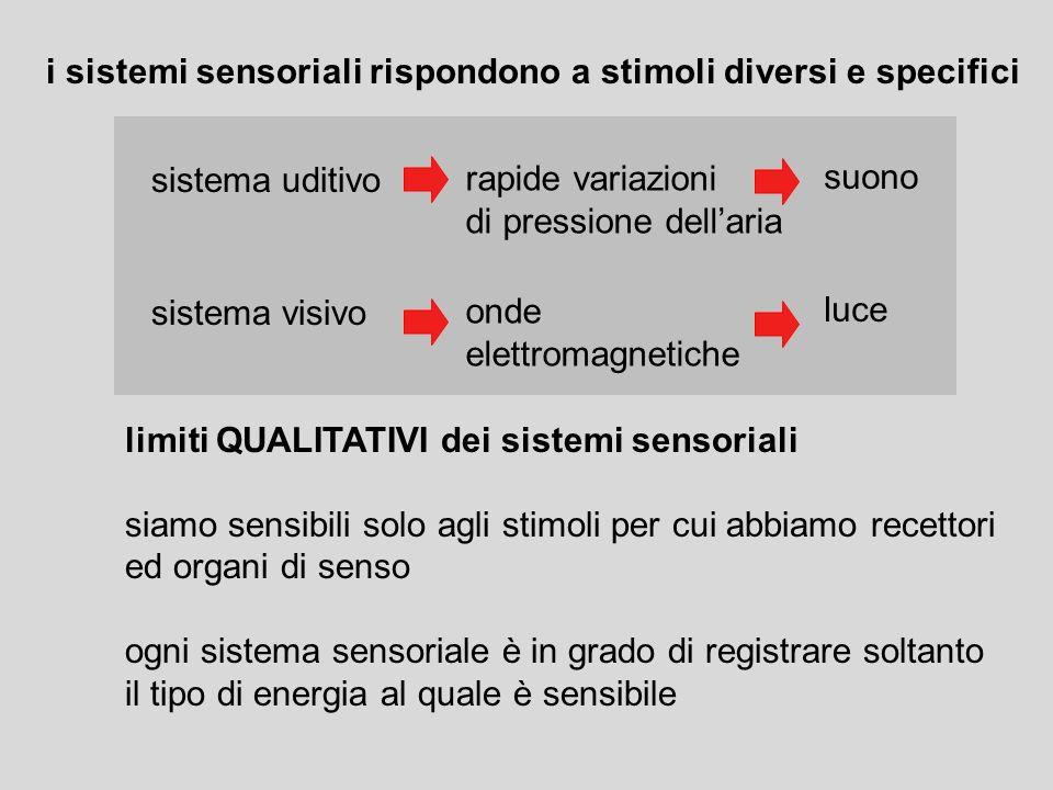 La psicofisica studia la relazione tra stimoli fisici e sensazioni interne variabili fisiche e variabili psicologiche limiti QUANTITATIVI dei sistemi sensoriali sogliaassoluta sogliadifferenziale