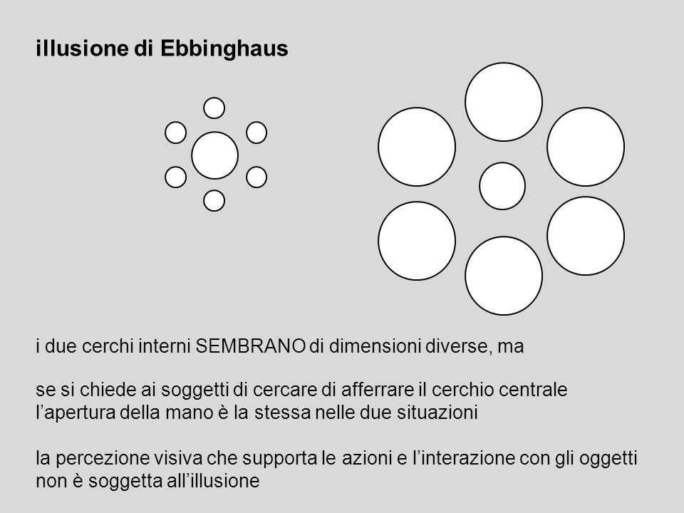illusione di Ebbinghaus i due cerchi interni SEMBRANO di dimensioni diverse, ma se si chiede ai soggetti di cercare di afferrare il cerchio centrale l