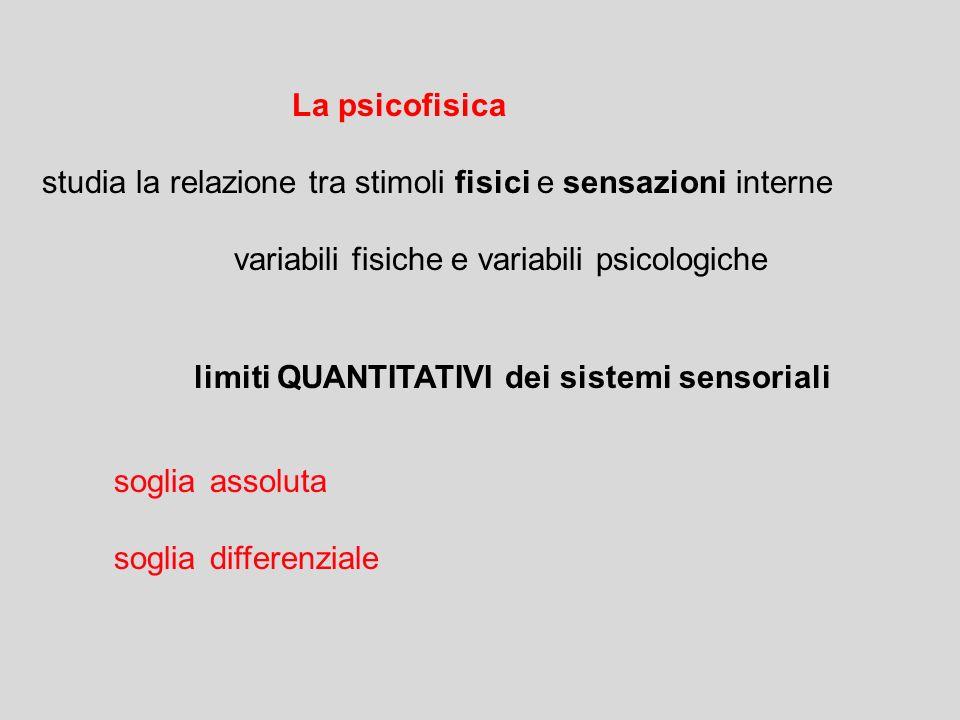 La psicofisica studia la relazione tra stimoli fisici e sensazioni interne variabili fisiche e variabili psicologiche limiti QUANTITATIVI dei sistemi