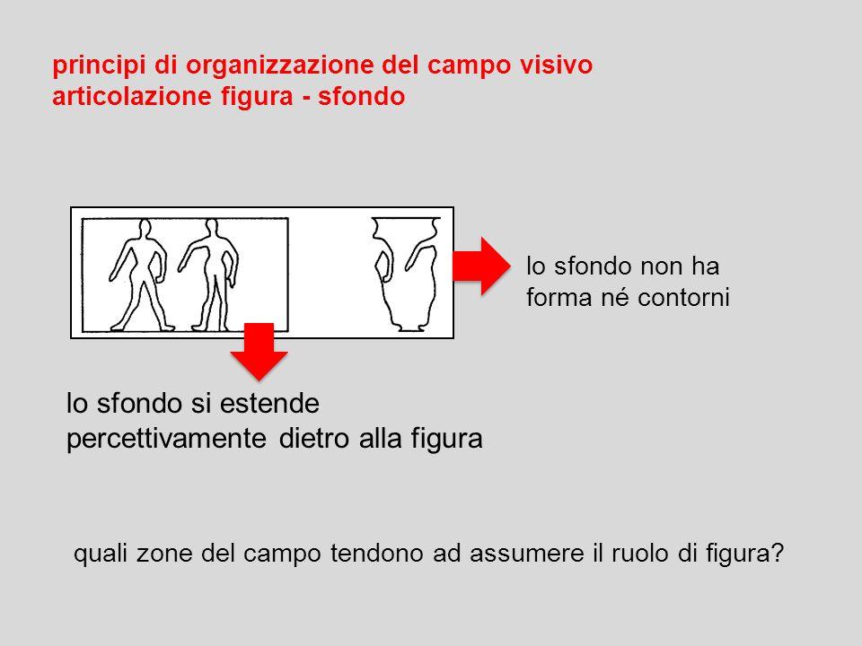 principi di organizzazione del campo visivo articolazione figura - sfondo quali zone del campo tendono ad assumere il ruolo di figura? lo sfondo non h