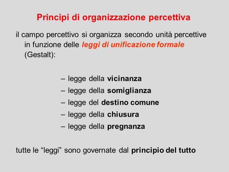 il campo percettivo si organizza secondo unità percettive in funzione delle leggi di unificazione formale (Gestalt): –legge della vicinanza –legge del