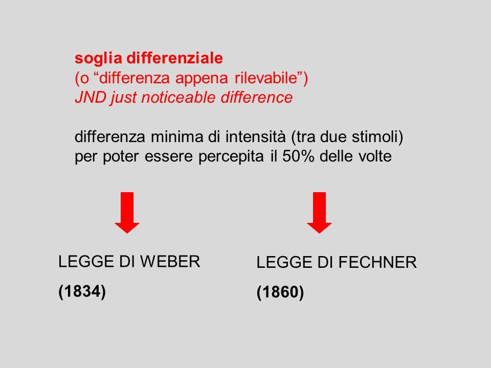 Abbozzo a 2D e 1/2 Abbozzo primario Modello 3D INPUT RICONOSCIMENTO la percezione inizia dallimmagine retinica e attraverso stadi successivi viene trasformata in una rappresentazione sempre più articolata e complessa teoria della percezione di Marr (1982) (bottom-up e top-down)