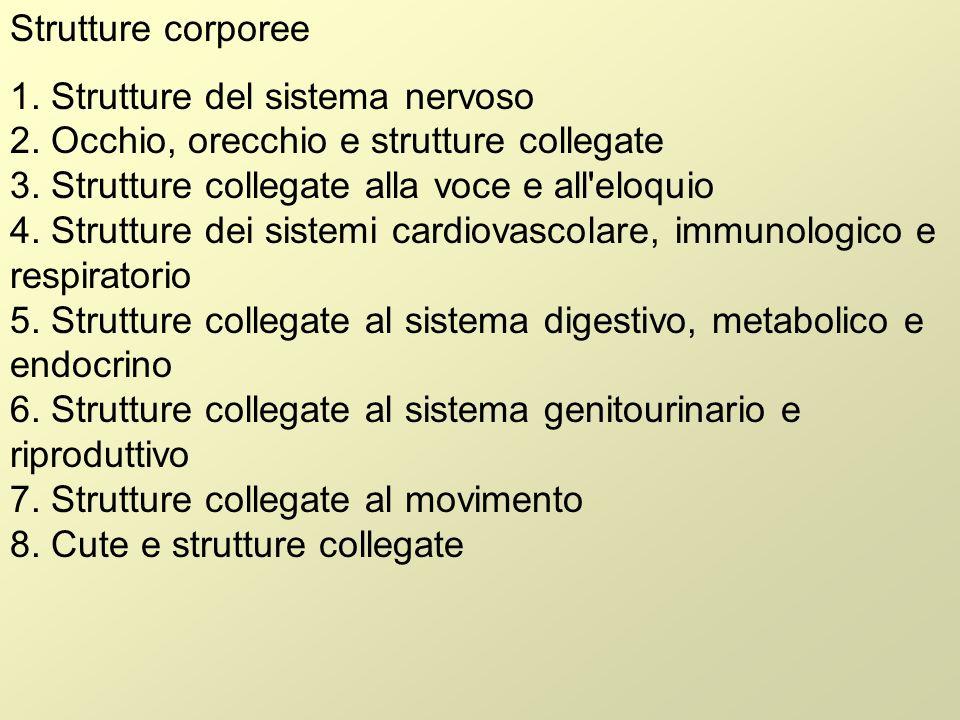 Attività e partecipazione 1.Apprendimento e applicazione della conoscenza 2.