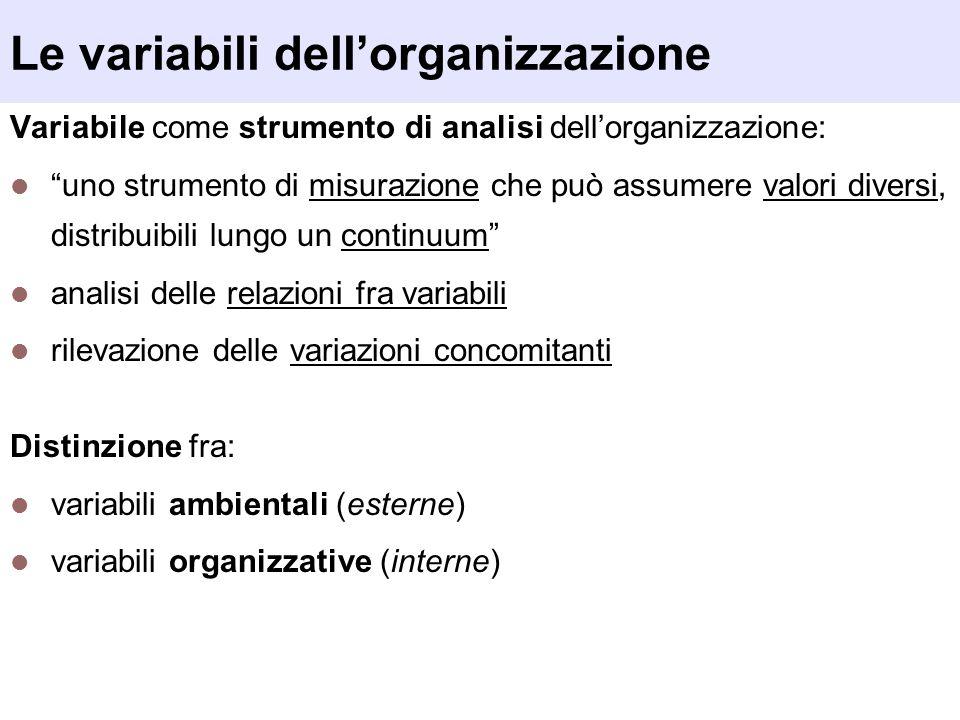 Le variabili dellorganizzazione Variabile come strumento di analisi dellorganizzazione: uno strumento di misurazione che può assumere valori diversi,
