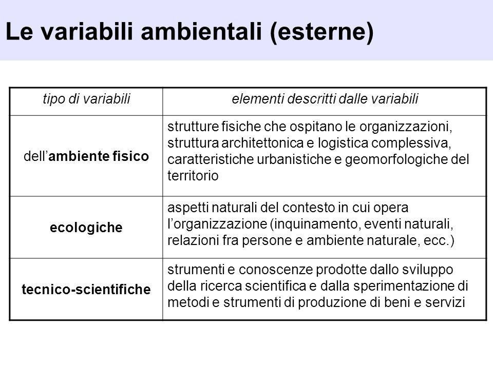 Le variabili ambientali (esterne) tipo di variabilielementi descritti dalle variabili dellambiente fisico strutture fisiche che ospitano le organizzaz