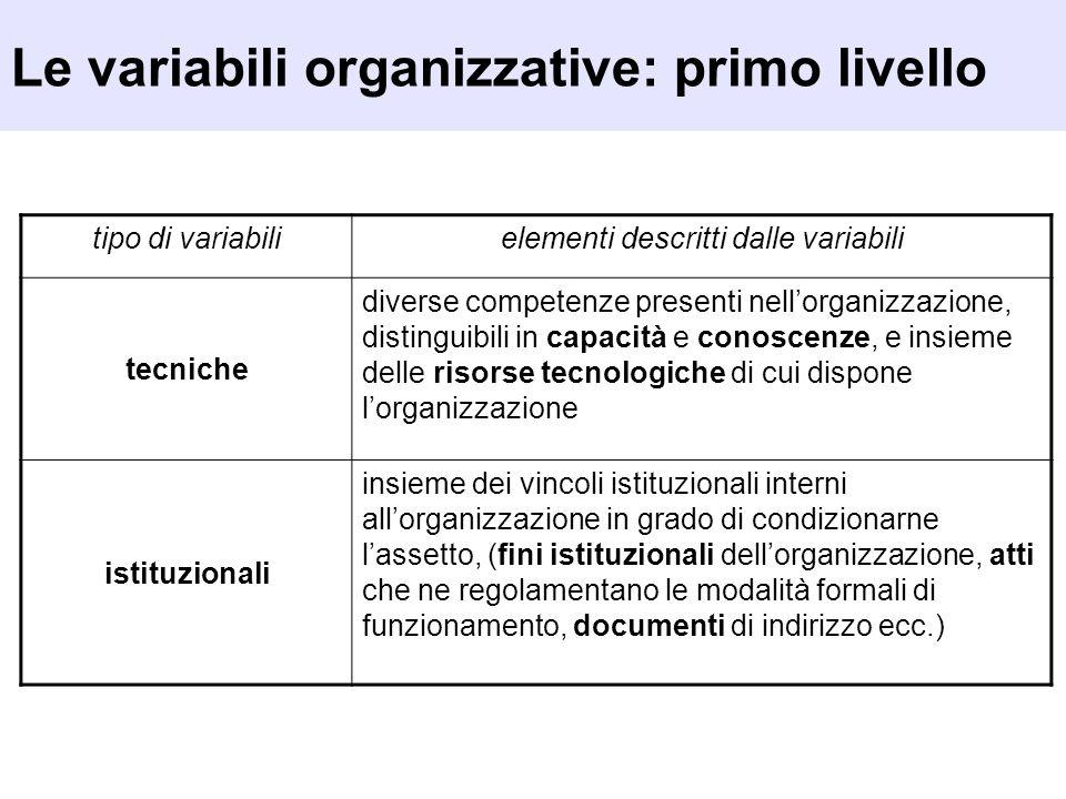 tipo di variabilielementi descritti dalle variabili tecniche diverse competenze presenti nellorganizzazione, distinguibili in capacità e conoscenze, e