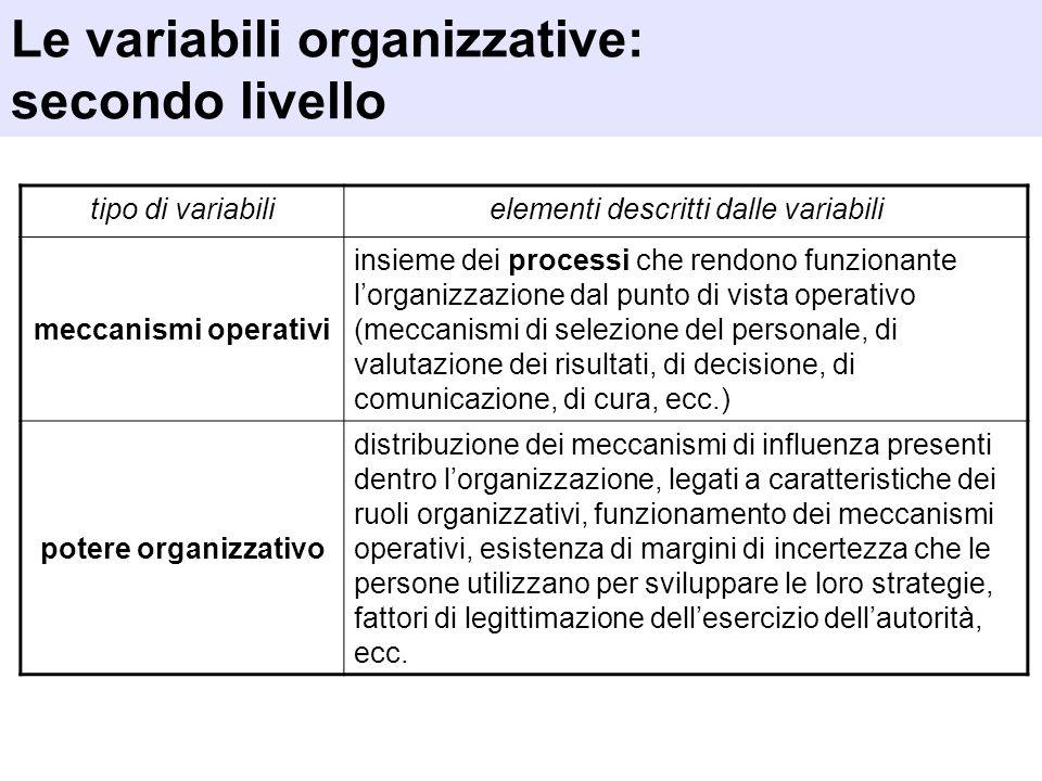 tipo di variabilielementi descritti dalle variabili meccanismi operativi insieme dei processi che rendono funzionante lorganizzazione dal punto di vis