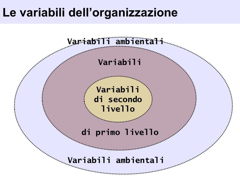 Le variabili dellorganizzazione Variabili di secondo livello Variabili di primo livello Variabili ambientali