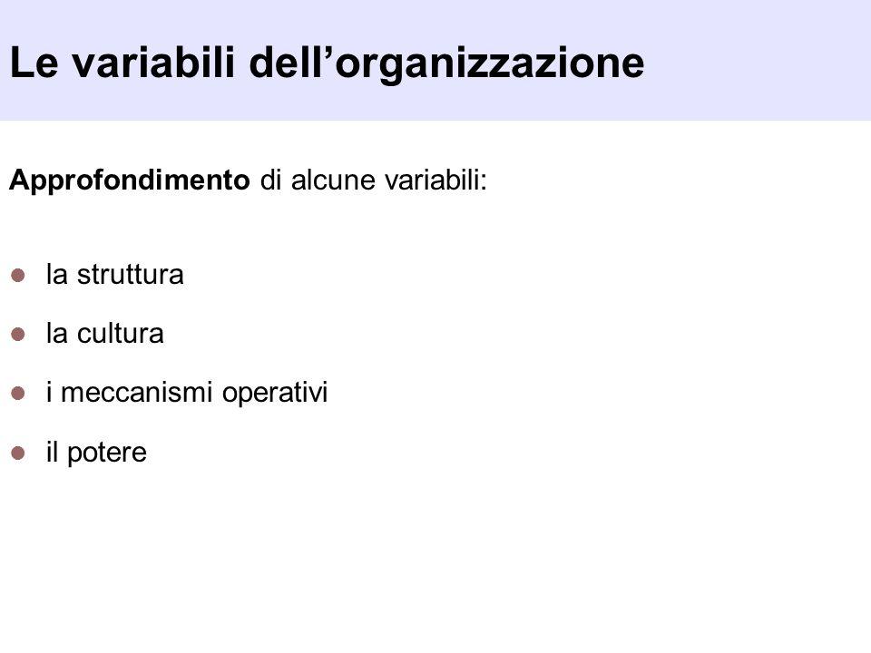 Le variabili dellorganizzazione Approfondimento di alcune variabili: la struttura la cultura i meccanismi operativi il potere
