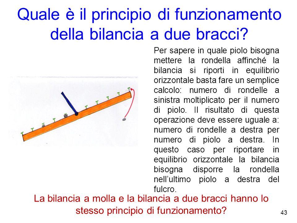 Quale è il principio di funzionamento della bilancia a due bracci?. Per sapere in quale piolo bisogna mettere la rondella affinché la bilancia si ripo