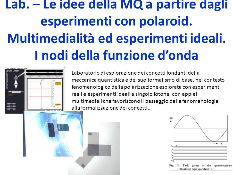 Lab. – Le idee della MQ a partire dagli esperimenti con polaroid. Multimedialità ed esperimenti ideali. I nodi della funzione donda Laboratorio di esp
