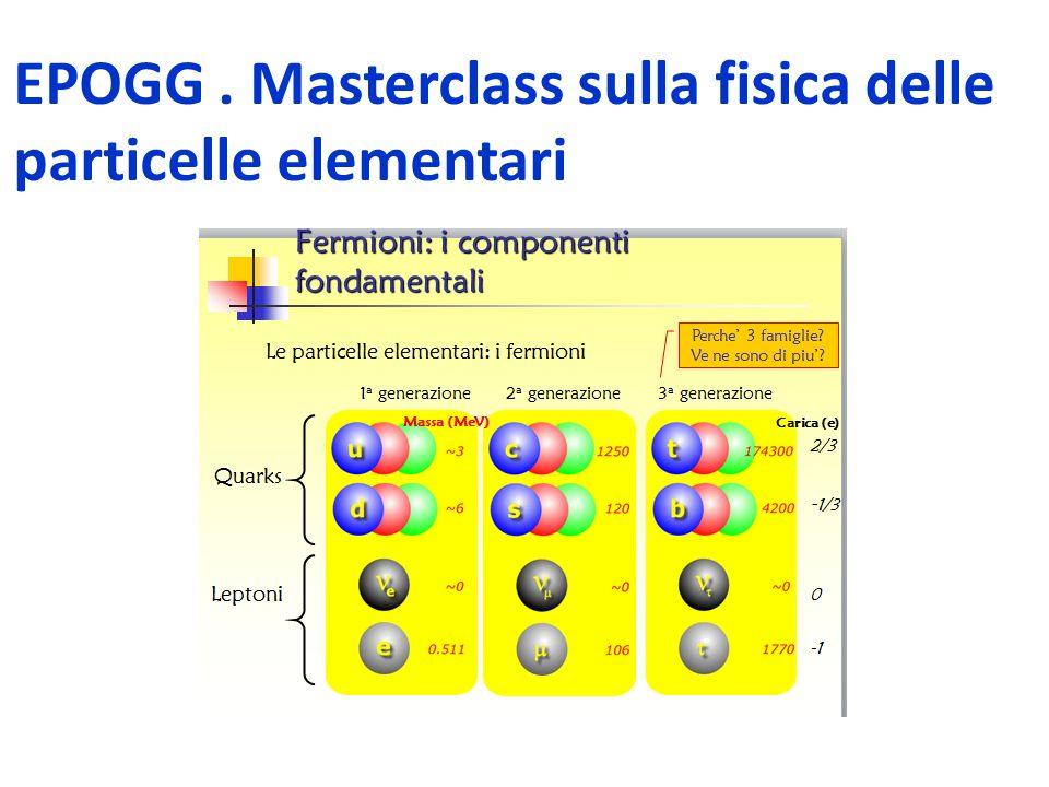 EPOGG. Masterclass sulla fisica delle particelle elementari