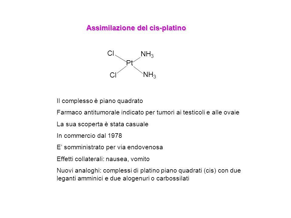 Pt Cl NH 3 Assimilazione del cis-platino Il complesso è piano quadrato Farmaco antitumorale indicato per tumori ai testicoli e alle ovaie La sua scope