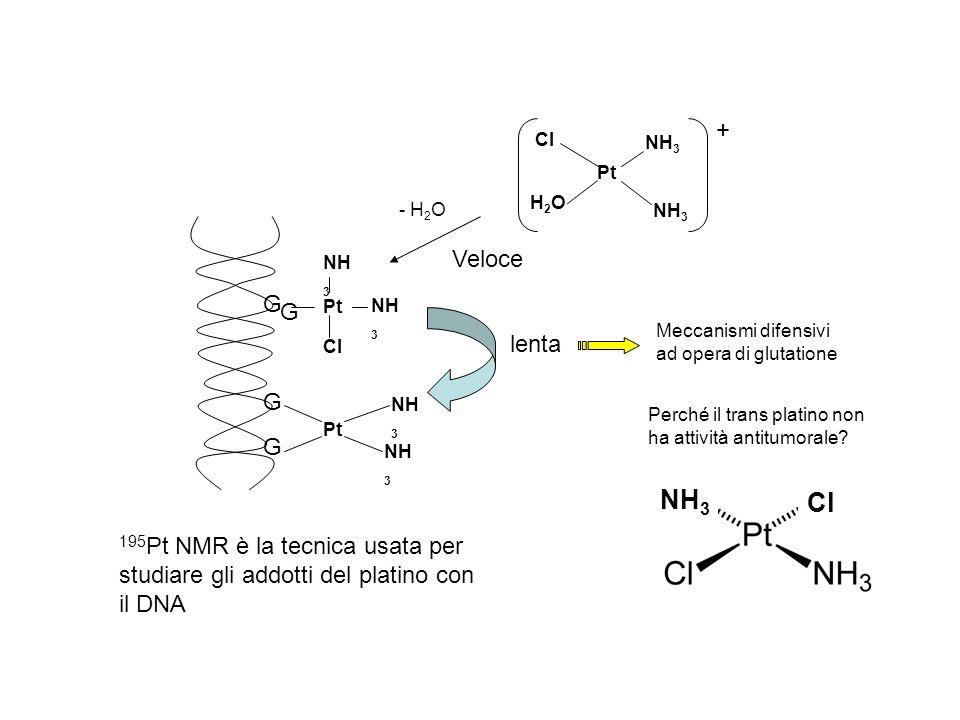 Pt Cl NH 3 H2OH2O + 195 Pt NMR è la tecnica usata per studiare gli addotti del platino con il DNA Veloce G G Pt NH 3 Cl G G Pt NH 3 lenta - H 2 O Mecc