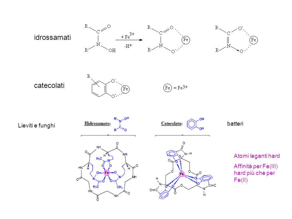 Pt Cl NH 3 Assimilazione del cis-platino Il complesso è piano quadrato Farmaco antitumorale indicato per tumori ai testicoli e alle ovaie La sua scoperta è stata casuale In commercio dal 1978 E somministrato per via endovenosa Effetti collaterali: nausea, vomito Nuovi analoghi: complessi di platino piano quadrati (cis) con due leganti amminici e due alogenuri o carbossilati