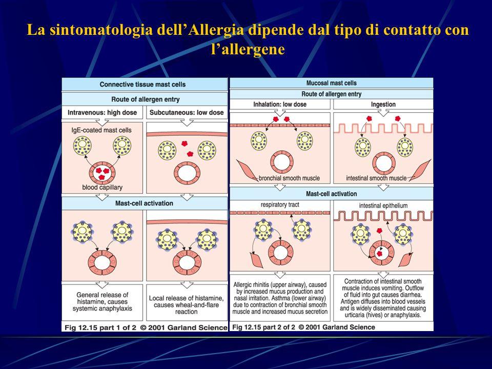 La sintomatologia dellAllergia dipende dal tipo di contatto con lallergene