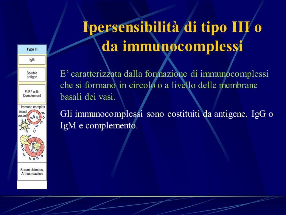 E caratterizzata dalla formazione di immunocomplessi che si formano in circolo o a livello delle membrane basali dei vasi. Gli immunocomplessi sono co